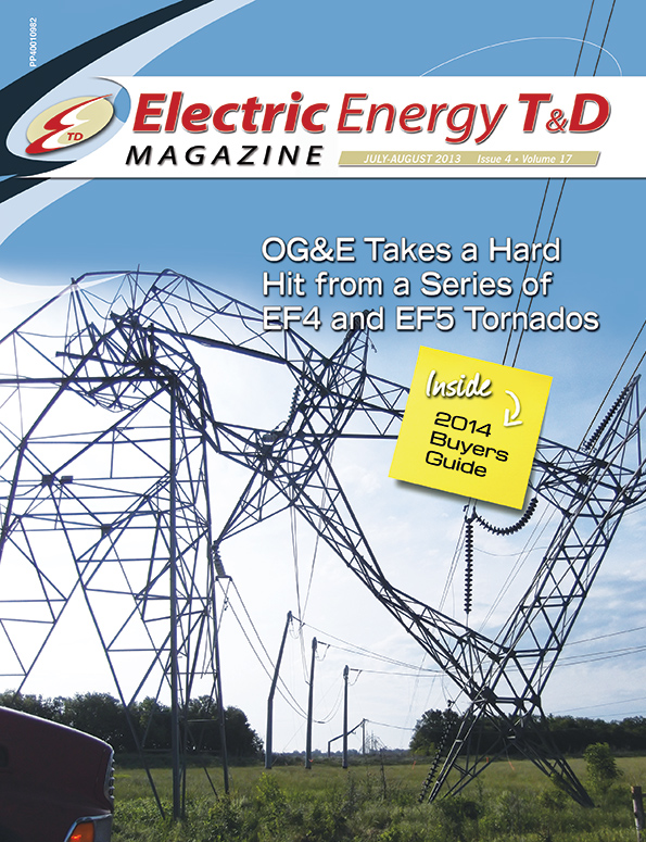 Effects of Electric and Magnetic Fields on Transmission Line Design