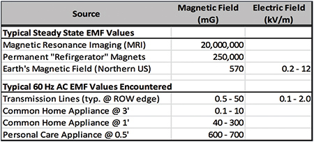 Effects of Electric and Magnetic Fields on Transmission Line