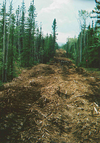 how to become a land clearing contractor